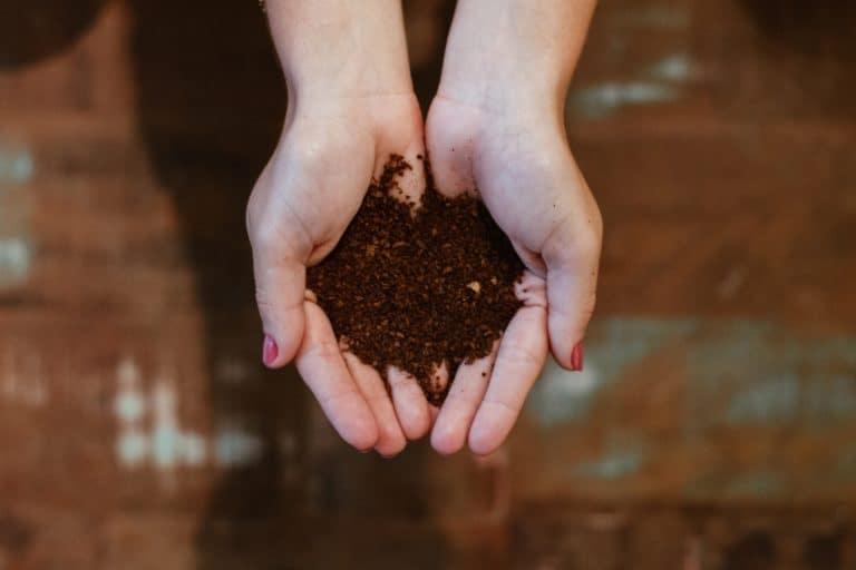 Le traitement des bio déchets - Favoriser l'économie circulaire